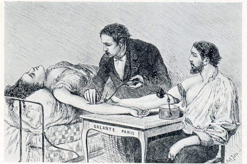 histoire de la circulation sanguine