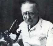 Arnault TZANCK